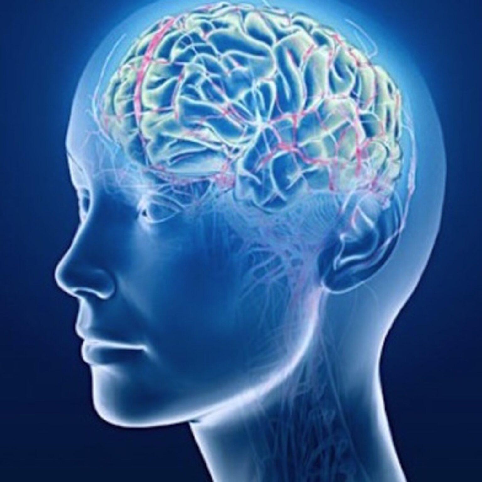 ghrelin in brain diseases